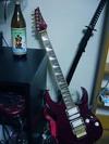 Shins_guitar